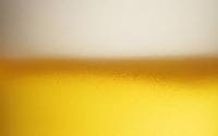 light beer